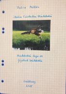 Petra Mettke/™Gigabuch Winkelsstein 14/Original 2015