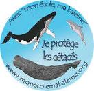 mon école ma baleine logo