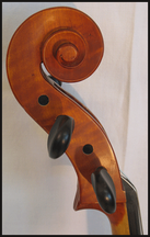 cello 402134 volute