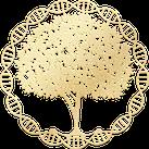 Logo pour magnétisme - soins énergétiques - Zona du site www.magnetisme-soinenergetique.com