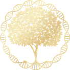 Logo pour magnétisme - soins énergétiques - oracles du site www.magnetisme-soinenergetique.com