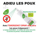 Le spray emergency a l'aloe vera très efficace contre les poux et lentes