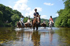 Venez nous rejoindre pour développer le tourisme équestre dans le Lot