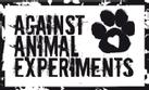 Aucun test sur les animaux, c'était un critère pour certaines de nos stars comme Karolina Kurkova qui mange bio, adore les animaux