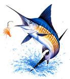 pêcheur de marlin