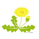 四季の花と実トップ
