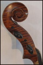 cello 402184 volute
