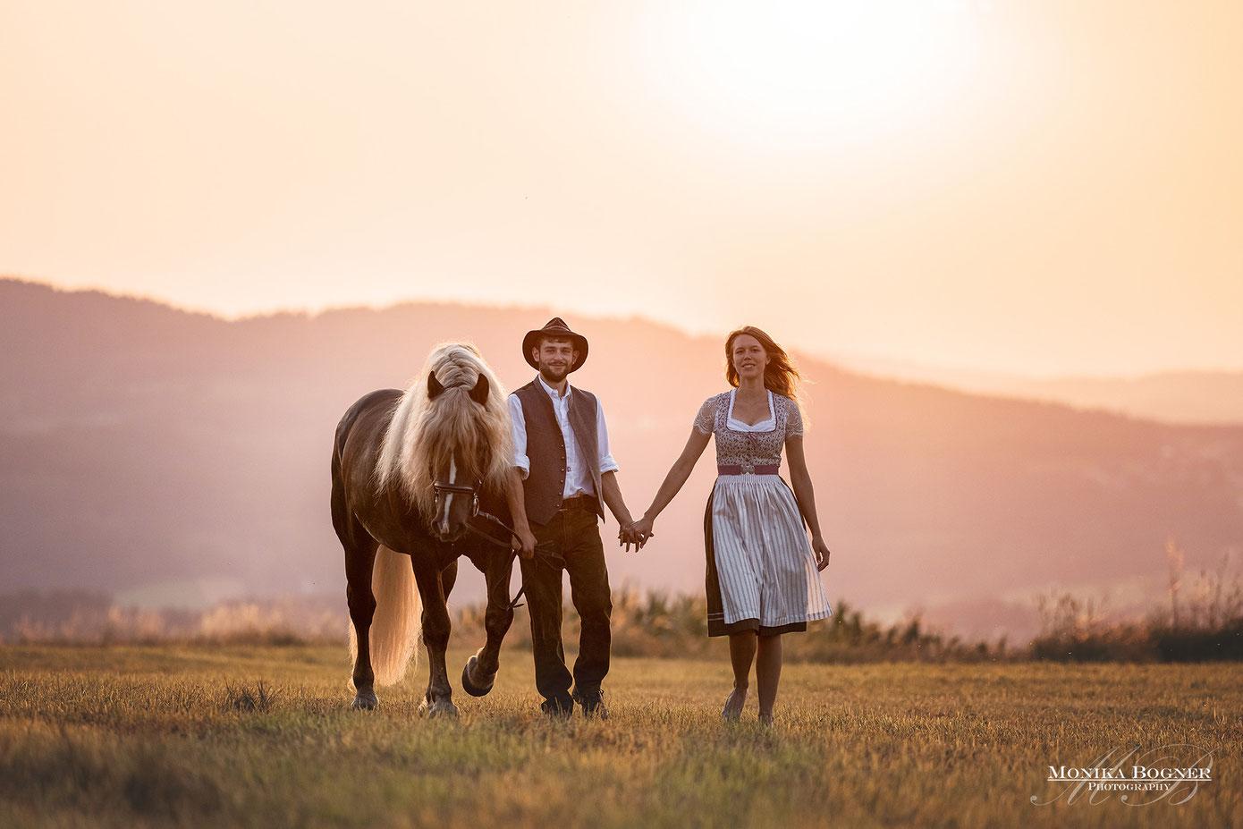 Springperd, Pinto, Fotoshooting mit Pferd und Mann