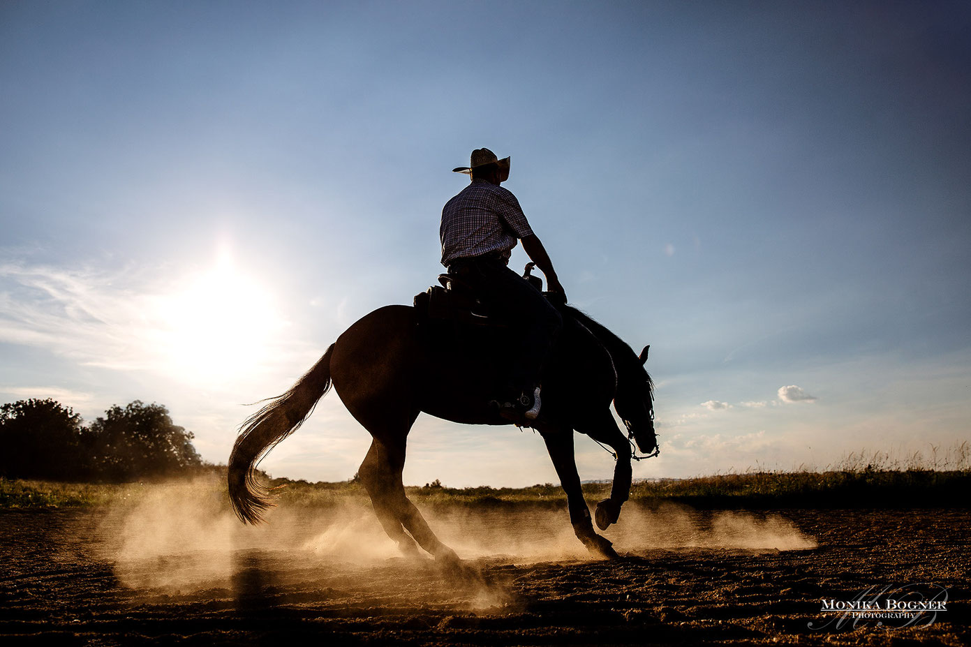 Quarter Horse, Spin, Westernreiten