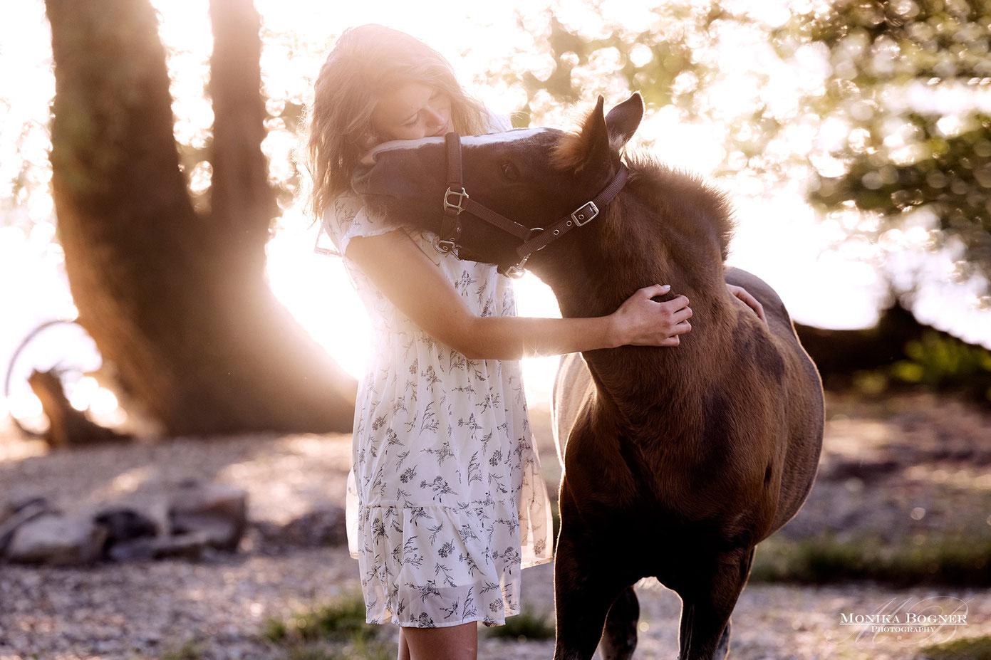 Pferdefotografie - Schmusebilder mit Pferd
