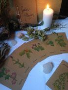 Pflanzenkarten