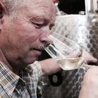 Silvaner trocken • Spätlese • Bocksbeutel • Schäfers Weingut