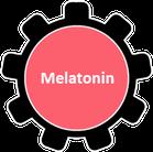 Was ist Melatonin?