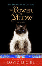 David Michie The Power of Meow