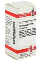 Pyrogenium Homöopathie Grippe Husten