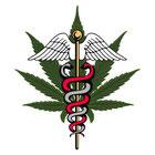 cannabis comme medicament