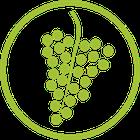 Wein/Obst
