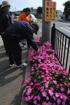 大浜婦人会のフラワーロードを審査する「花と緑あふれる地域コンクール」の審査員=19日午後、大浜公民館前