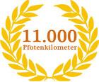 11.000 Pfotenkilometer mit Toback
