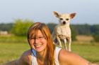 Feivel und Ayline von den Bärenbrüdern Chihuahua auf Chi-Love.de