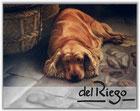 Vers le site de Del Riego