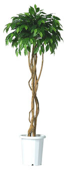 人工樹木ミックスフィカストピアリーシングルバインH1800