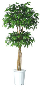 人工樹木ミックスフィカスダブルレイヤーH1800