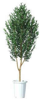 人工樹木オリーブH1800