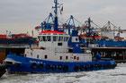 Die Vielfalt von allema Schwimmfähigem im Hamburger Hafen