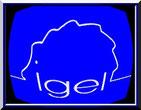 Individuelle Gesundheitsleistungen (IGeL)  Auf Ihren Wunsch hin bieten wir Ihnen in unserer Praxis auch Leistungen an, die von Ihrer gesetzlichen Krankenkasse nicht bezahlt werden