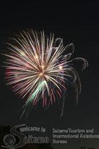 平成26年 さいたま市花火大会