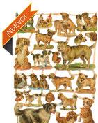 Cromos de perros