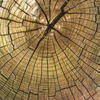 Servilletas para decoupage decoradas con texturas de madera natural