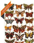 Cromos de insectos y mariposas