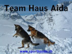 www.sporthunde.ch