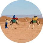 Viaggi nel deserto HarmonyDesert.com