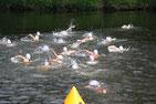 Schwimmen in der Mulde