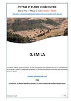 Monographie : Numidie - Djemila