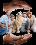 familia tranquila y contenta familia protegida seguros buenos