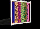 Струны для виолончели  PASSIONE  PIRASTRO