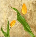 Servilletas decoras con tulipanes para decoupage.