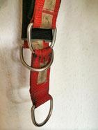 6 Monate altes, durchgehend getragenes Halsband