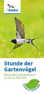 Bild: NABU - Stunde der Gartenvögel