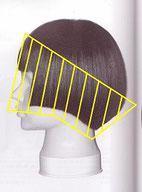 ストレートパーマの施術範囲が前髪~耳まわり~えりあしまでのイラスト
