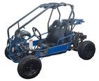 CLICK HERE FOR RAPTOR-mini 110cc CATALOG