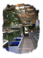 Gartenteichzubehör bei Zoo Kellner