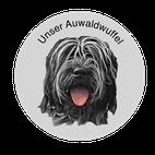 Schapendoes Auwaldwuffel Bisou