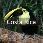 Button Costa Rica mit Tukan