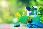 ökologische Reinigungsmittel und Pflegeprodukte