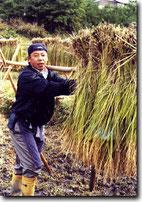 代表 : 古川徳昭